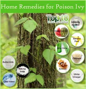 home remedy for poison poison treatments viral infections