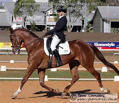 jingle bell swing the equestrian toowoomba dressage chionships