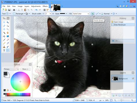 paint net 4 gets beta release adds commit button choice of colour scheme