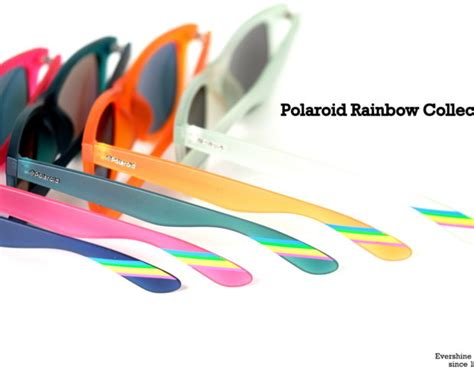 polaroid rainbow news evershine optical
