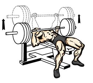 bench press eccentric phase how to get ripped in a month get the body into shape and