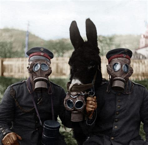 wann begann 2 weltkrieg 1914 1918 das perfide am gaskrieg war die panik welt