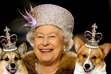 Queen Elizabeth Ii Corgis by La Regina Vieta A William E Kate Di Portare Il Loro Cane A