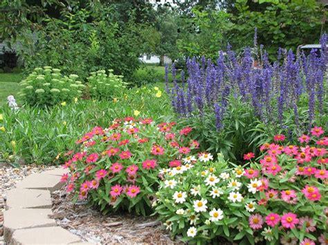 60 Best Zinnias Images On Pinterest Flowers Garden Cut Zinnias Flower Garden