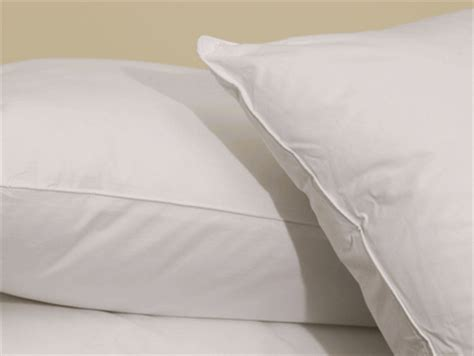 louisville bedding company pillows louisville bedding company down alternative eco smart