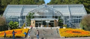 botanik garten birmingham botanical gardens