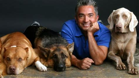 how to get cesar millan to your cesar millan from el perrero to leader of the pack