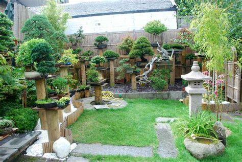 beautify your garden decor with bonsai plants outdoor garden bonsai plants