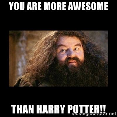 Harry Potter Meme Generator - you are more awesome than harry potter you re a wizard