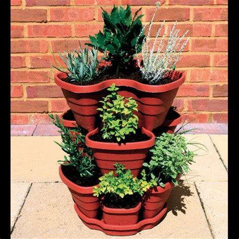 Small Herb Planters by Great Way To Plant Herbs In A Small Space Home