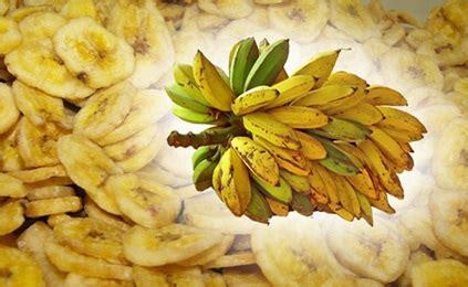 kripik pisang raja   pembuatannya