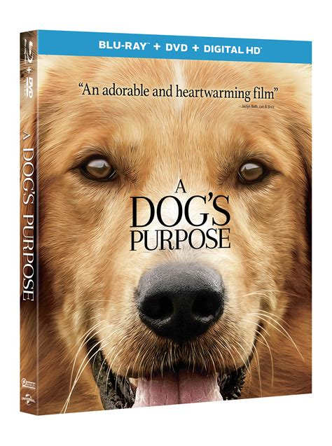 a s purpose soundtrack enter to win quot a s purpose quot on and dvd movin 92 5 seattle s 1 hit