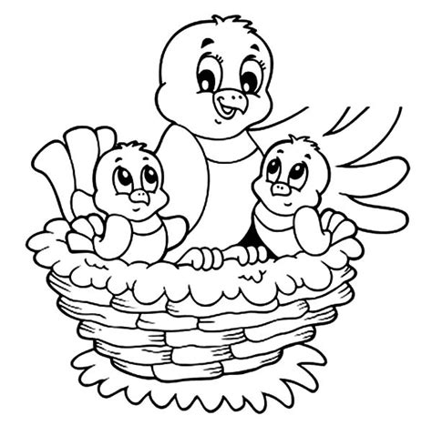 coloring pages baby birds free coloring pages of baby birds nest