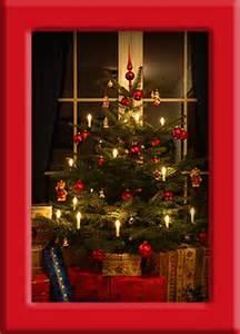 tannenbaum weihnachtsbaum nordmanntannen blaufichten