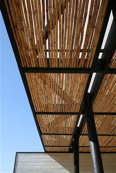 bamboo awnings bamboo bamboo stalks and bamboo shades on pinterest