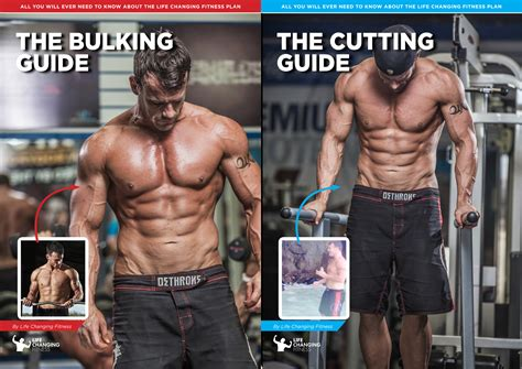 best bulking workouts workout routine for bulking and cutting eoua