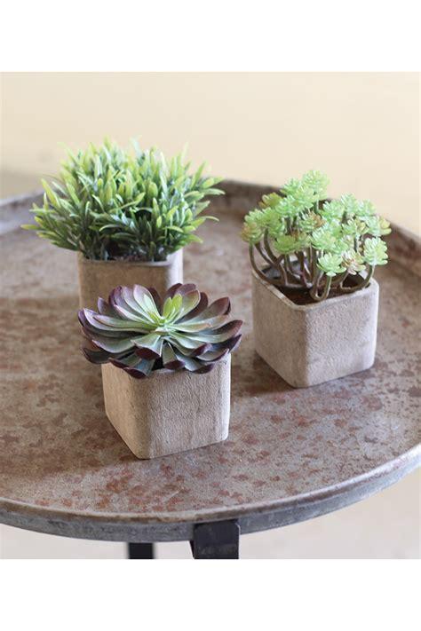set   small artificial succulents  square pots