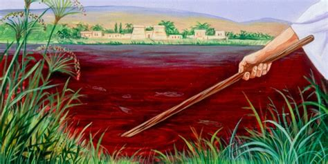themes in god dies by the nile the 10 plagues watchtower online library