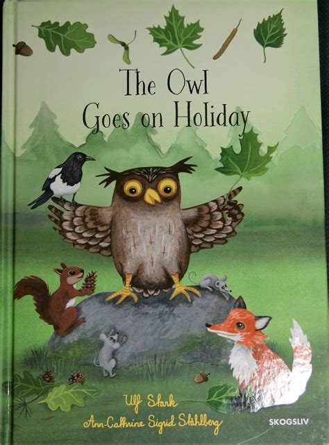 owl picture book the owl goes on by ulf stark reviews discussion