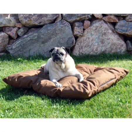 kong dog bed petsmart dog bathing suits petsmart download page pet photos