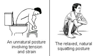 stay in the toilet meaning deep squatting toilets posture movement pain