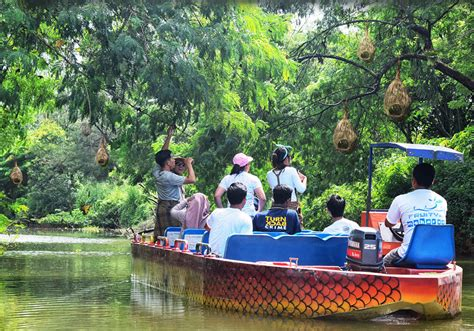 Bibit Buah Mekarsari mekarsari taman buah the largest fruit garden in the world