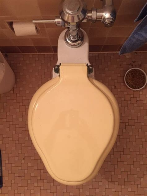 style toilet seats toilet seat search vintage style curved elongated