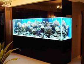 aquarium designs top 7 aquarium designs for your interior design