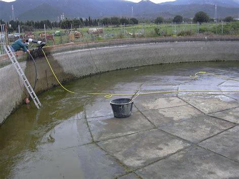 vasca in cemento benza riparazioni e recupero di vasche in cemento