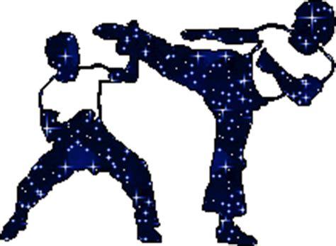 Imagenes Gif Objetivos | im 225 genes animadas de artes marciales gifs de deportes