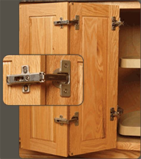 Cabinet Door Hinges by Blum and Salice   WalzCraft
