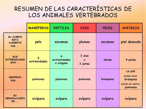 Resumen Y Sus Caracteristicas by Los Animales Vertebrados Ppt Descargar