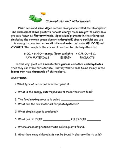 Chloroplasts And Mitochondria Worksheet Answers photosynthesis diagram worksheet images