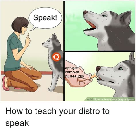 how to teach to speak speak apt ge remove pulseaudio wiki how to teach your to speak how to meme on