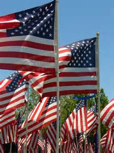 american flags on memorial day free stock photo public