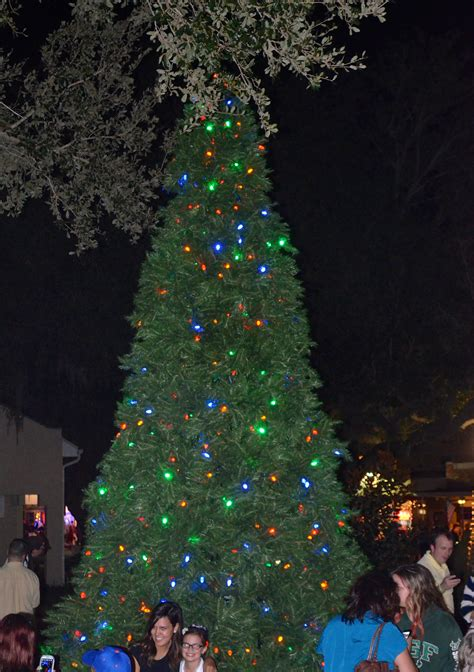 2013 safety harbor christmas tree lighting ceremony