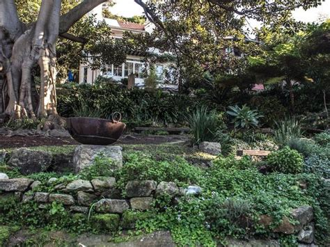 wendys winter garden wendy s secret garden things to do in lavender bay sydney