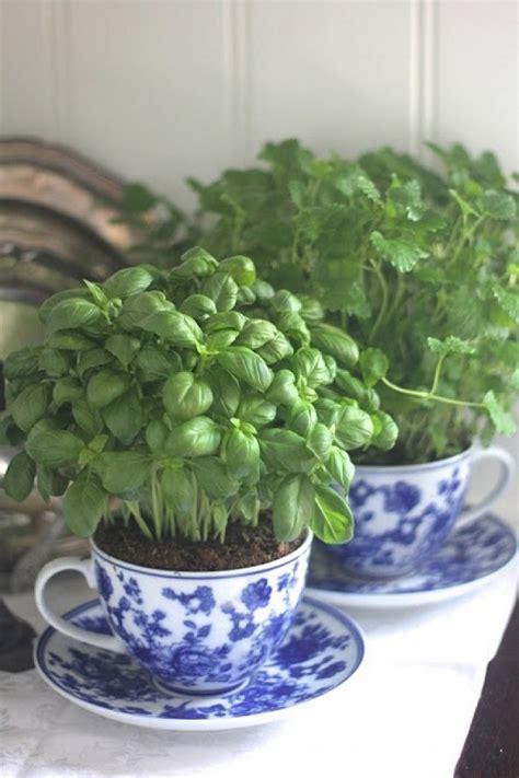 beautiful indoor plants 33 creative ways to include indoor plants in your home