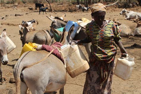 Baringo County Cabinet by Kenya Baringo Drought News