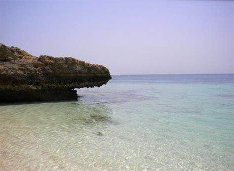 soggiorno mare oman viaggi in oman tour oman vacanze diving in mare oman dubai