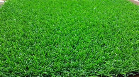 Lu Sorot Untuk Lapangan Futsal Tips Memilih Rumput Sintetis Untuk Taman Lapangan Futsal