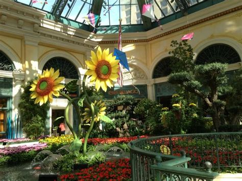 what time does the botanical gardens decor du jardin picture of conservatory botanical