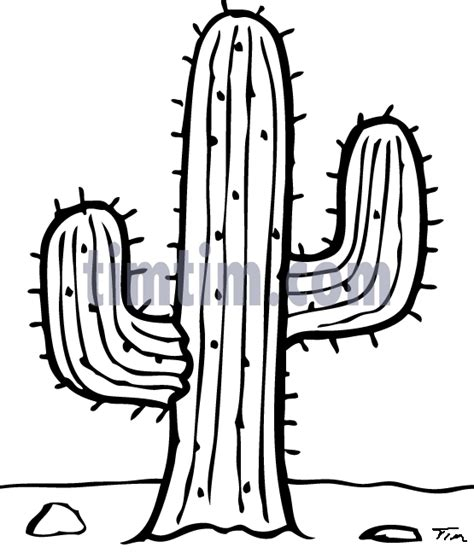 Free Prickly Pear Cactus Coloring Pages Cactus Coloring Page