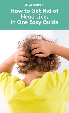 How To Get Rid Of Lice On Couches by 1000 Images About Back To School On