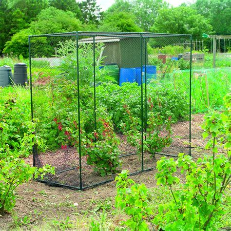 fruit tree cage customer reviews for gardman fruit cage 2m x 08m x 16m