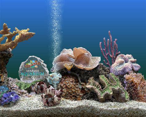 sfondi animati del 17 apr 2011 in sfondi hd formato 16 9 sfondi per screensaver di acquario sfondissimo sfondi
