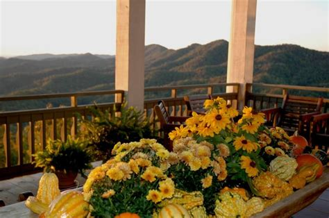 smoky mountain bed and breakfast 17 best images about townsend tn hotels lodging on pinterest tennessee electric