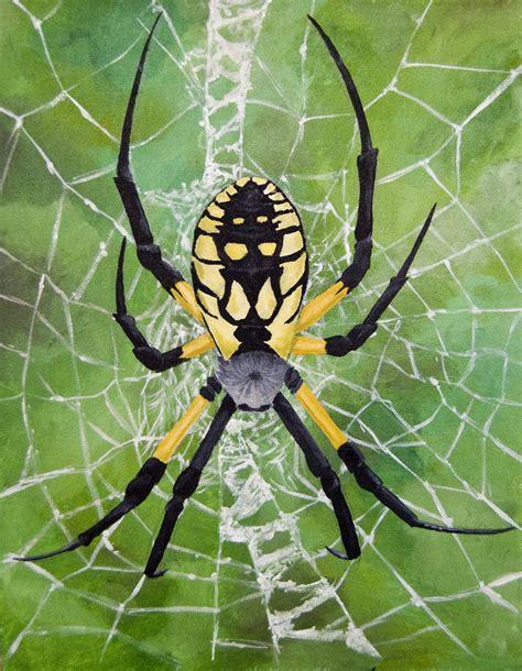 Garden Spider Totem Black And Yellow Orb Weaver By Biomechanoid56 On Deviantart