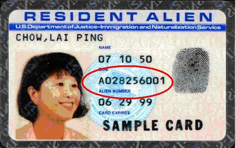 you should probably know this about resident alien card with no expiration date - Empty Visa Gift Card Numbers 2013