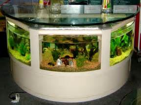 creative ideas to decorate home aquarium decoration ideas pictures your dream home